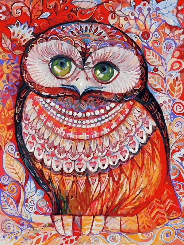 Медовая сова, 30*40 см картина раскраска по номерам на ...