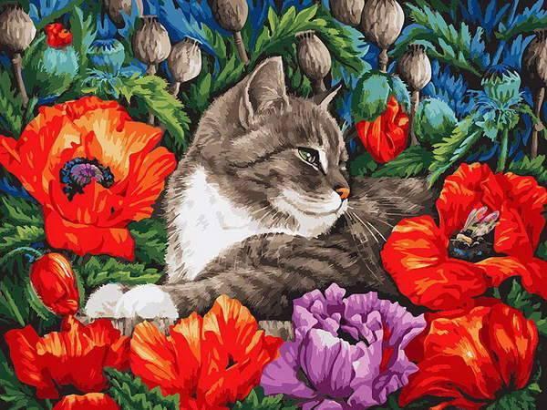 """Раскраски по номерам 30*40 см """"Кот в маках"""" арт. 183-AS ..."""